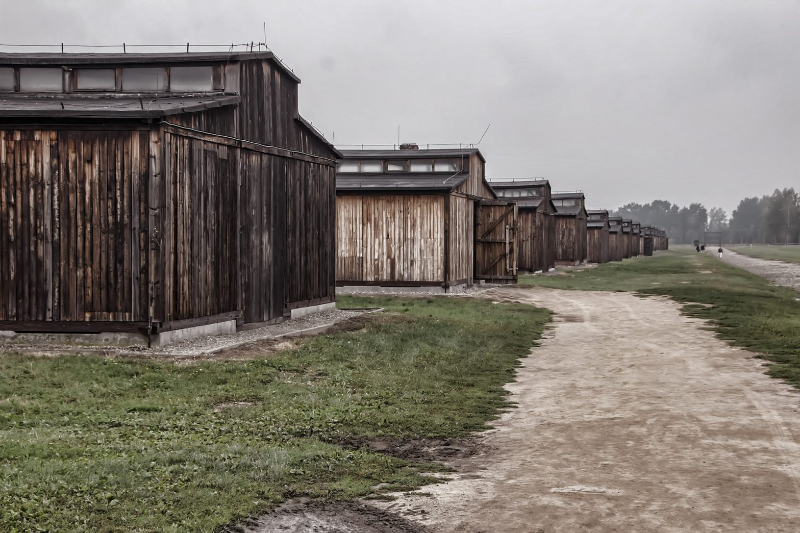 A row of empty huts at Auschwitz